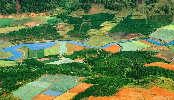 Những cánh đồng đầy màu sắc ở hồ Dankia - Suối Vàng