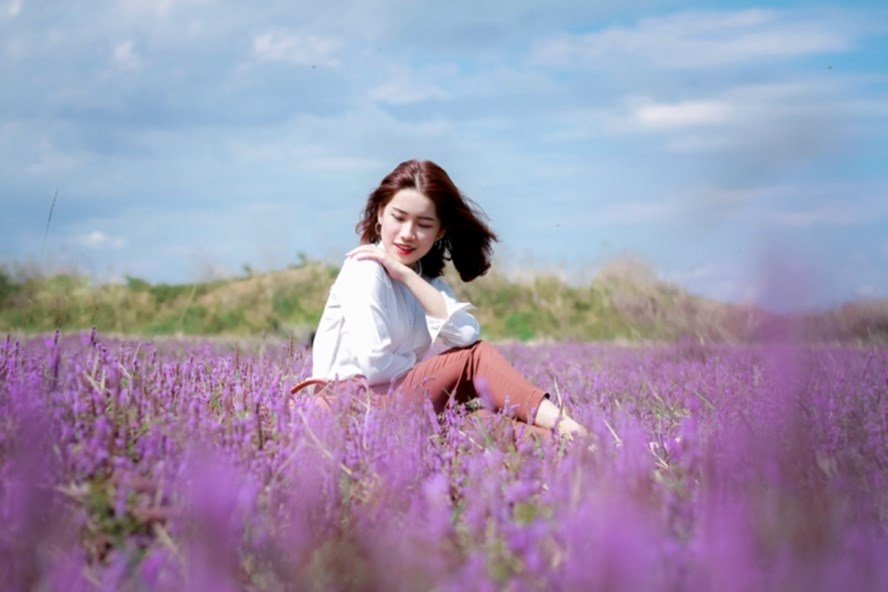 du khách chụp hình cùng cánh đồng hoa oải hương