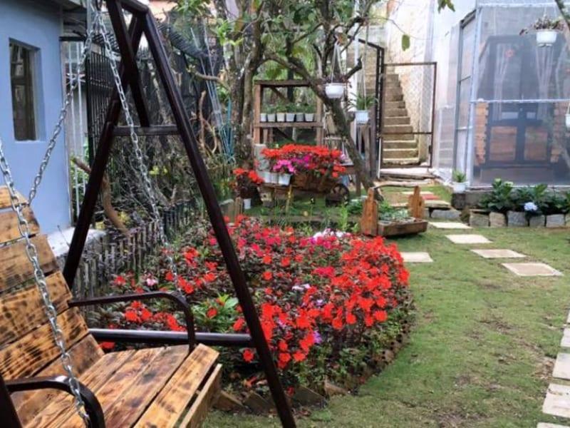 Sân vườn đẹp lạ thường