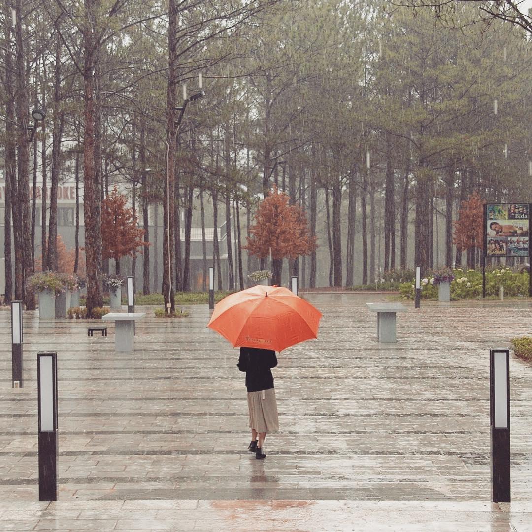 Đà Lạt mùa mưa