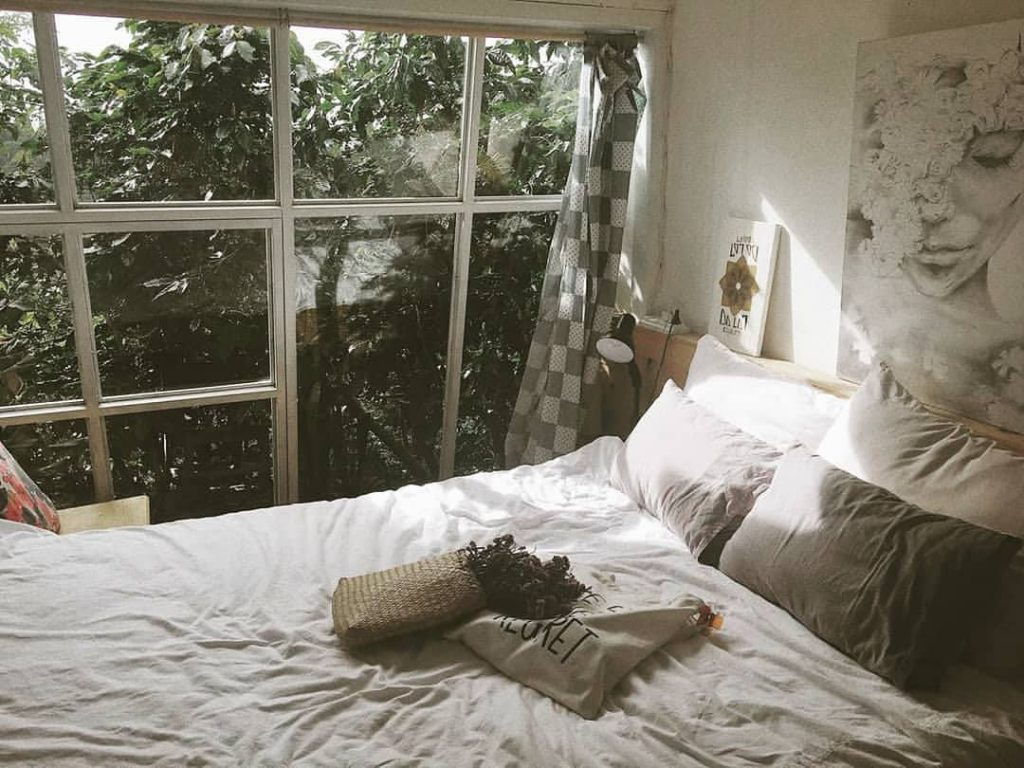 vào tháng 11 Đà Lạt thường có nhiều phòng nghỉ rẻ đẹp