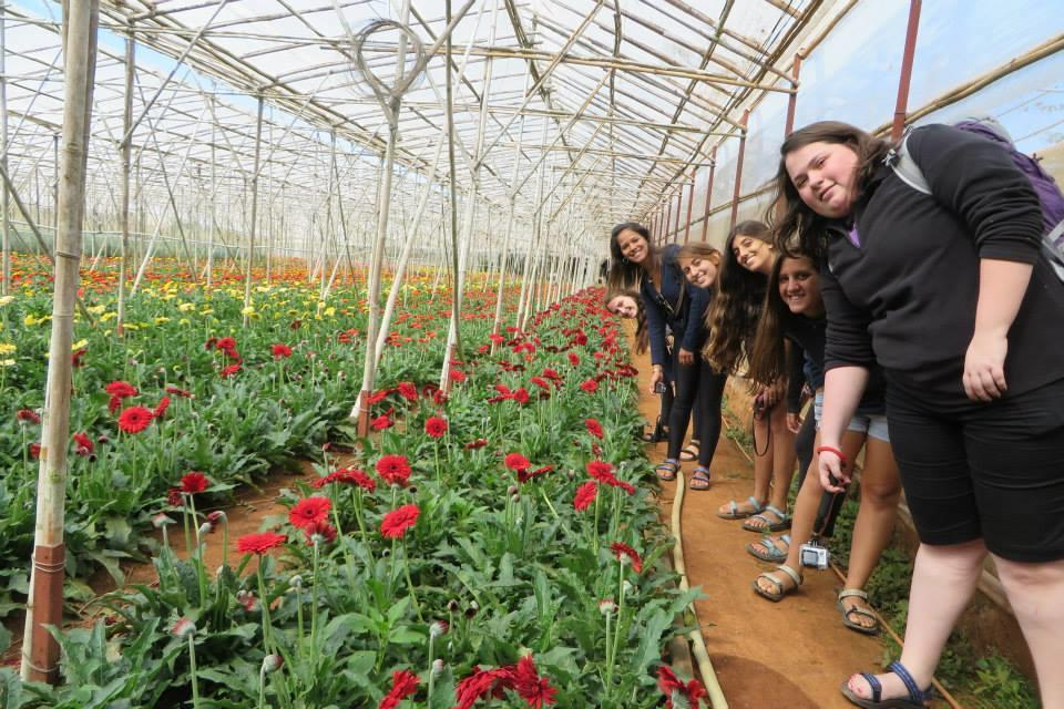 Du khách tham quan vườn hoa