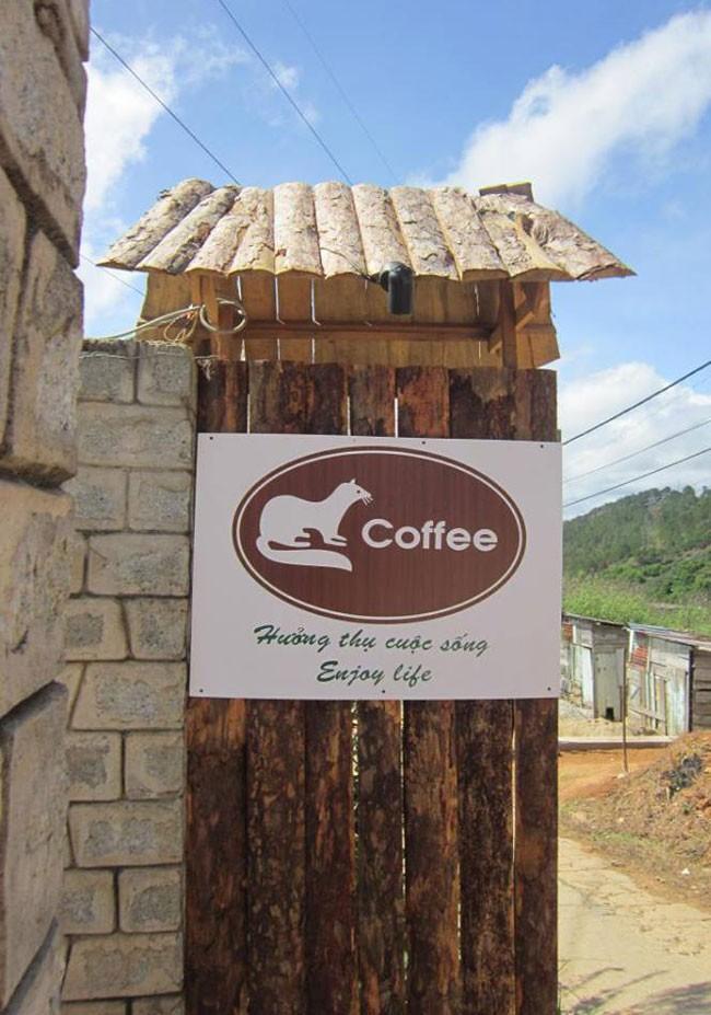 Trang trại cà phê chồn Đà Lạt