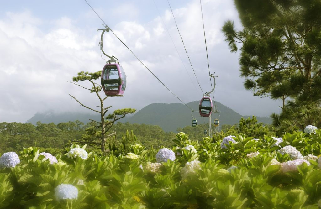 Khách sạn Thu Hà cung cấp dịch vụ đặt tour miễn phí.